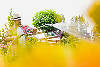Photo of male gardener watering plants in garden shop