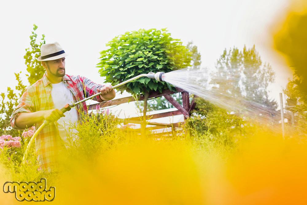 Photo of male gardener watering plants in garden shop