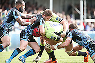 Christian Day of Northampton Saints (centre) is caught around the neck by Dave Lewis of Exeter Chiefs during the LV Cup Final match at Sandy Park, Exeter<br /> Picture by Andy Kearns/Focus Images Ltd 0781 864 4264<br /> 16/03/2014