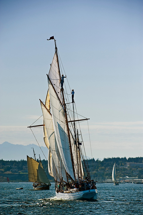 The schooner Alcyone sailing off Port Townsen, WA during the Port Townsend Wooden Boat Festival.