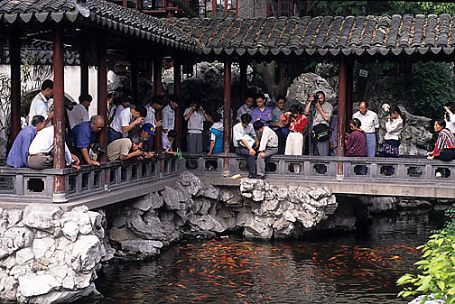 China, Cities, Tourists viewing carp in city of Shanghai.