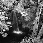Sempervirens Falls - Big Basin Redwoods State Park, CA - Infrared Black & White