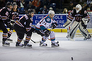 KELOWNA, CANADA - FEBRUARY 01:  Reid Gardiner #23 of the Kelowna Rockets, Vladislav Yeryomenko #8 of the Calgary Hitmen at the Kelowna Rockets game on February 01, 2017 at Prospera Place in Kelowna, British Columbia, Canada.  (Photo By Cindy Rogers/Nyasa Photography,  *** Local Caption ***