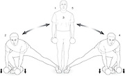 Vector illustration showing the sequence of the 3D Lunge exercise.