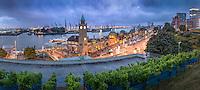Direkt an der Elbe im Hamburger Stadtteil St. Pauli zwischen Niederhafen und Fischmarkt liegen die St. Pauli-Landungsbrücken. Sie bilden einen zentralen Verkehrsknotenpunt von S-Bahn, U-Bahn und Schiffen und sind eine Touristenattraktion am Hamburger Hafen.