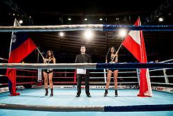 Slovenian and Austrian flags during Dejan Zavec Boxing Gala event in Sentilj, on September 30, 2017 in Mond, Casino & Hotel, Sentilj, Slovenia. Photo by Vid Ponikvar / Sportida