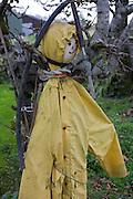 Makeshift scarecrow stands pinned against a tree in a garden belonging to crofter Angus McHattie, Waterloo, Isle of Skye.