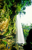 Misol-ha Waterfalls, near Palenque, Chiapas, Mexico