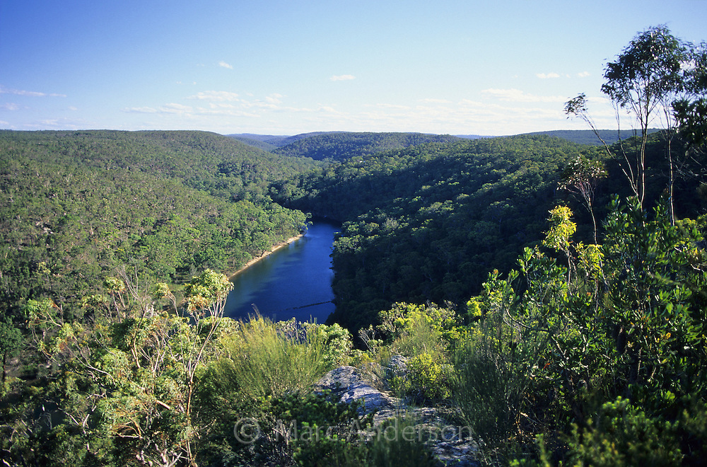 Hacking River surrounded by forest, Bungoona Lookout, Royal National Park, Australia.
