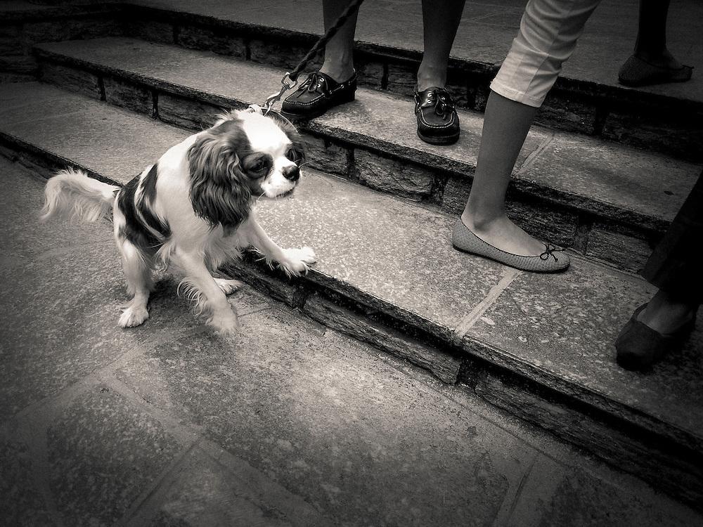 Street Photography, Europe, Italy, Selvino
