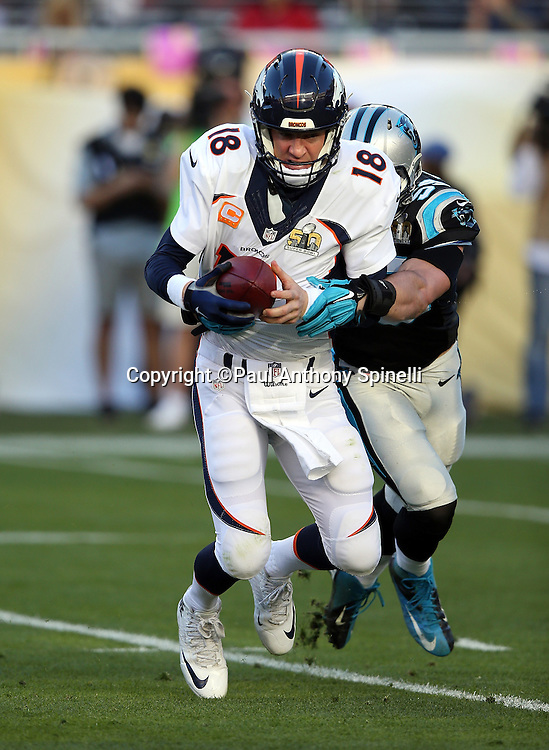 Denver Broncos quarterback Peyton Manning (18) gets sacked on third down by Carolina Panthers middle linebacker Luke Kuechly (59) forcing a first quarter punt during the NFL Super Bowl 50 football game against the Carolina Panthers on Sunday, Feb. 7, 2016 in Santa Clara, Calif. The Broncos won the game 24-10. (©Paul Anthony Spinelli)