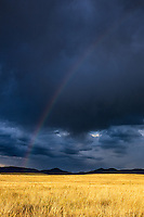 A rainbow stretches across the sky after a late summer rainstorm in the Wet Mountain Valley near Westcliffe, Colorado