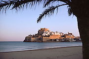 The walled town of Peniscola, Spain framed by a palm tree from the adjacent beach.