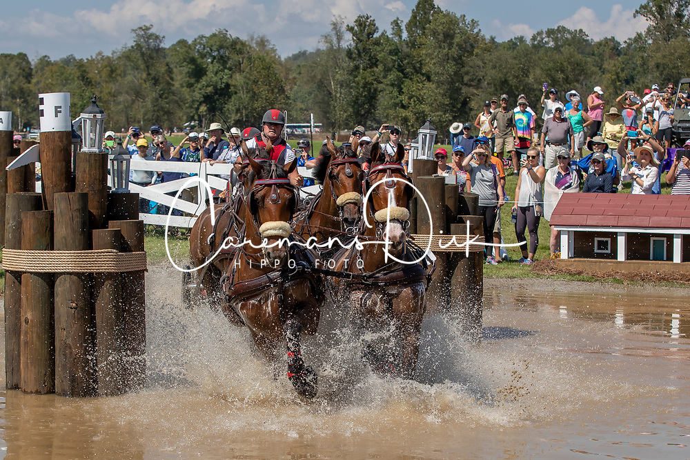 Weber Chester, USA, Asjemenou, Boris W, First Edition, Reno<br /> World Equestrian Games - Tryon 2018<br /> © Hippo Foto - Dirk Caremans<br /> 22/09/2018