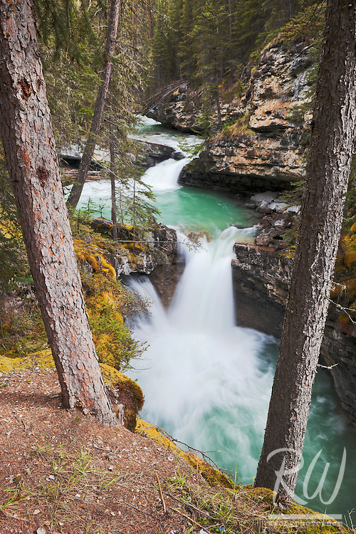 Small Waterfall Along Johnston Creek in Johnston Canyon, Banff National Park, Alberta, Canada