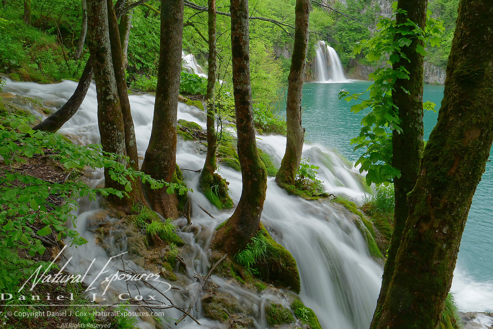 Waterfalls along the lower lake trail in Plitvice Lakes National Park, Croatia.