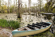 Rowboat in the blackwater bald cypress and tupelo swamp during spring at Cypress Gardens April 9, 2014 in Moncks Corner, South Carolina.