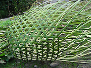 A porter wove this bamboo basket (dhoko) at the village of Bamboo, at 7580 feet elevation, in Annapurna Conservation Area, Nepal.