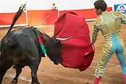 Bullfighter Francisco Martinez thrusts a sword into a bull at the Plaza de Toros March 3, 2018 in San Miguel de Allende, Guanajuato, Mexico.