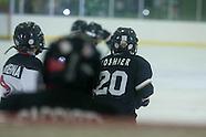 2012 Hockey