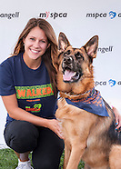 MSPCA Logo Wall and Team Portraits