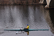 Man scullling on the Charles River, between Boston and Cambridge, MA