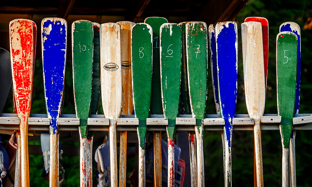 Row of canoe paddles at Camp Cherokee Scout Reservation near Yanceyville, NC.