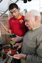 Grandfather and grandson at home working in the greenhouse,