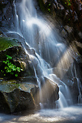 Waterfall and Sunbeam, Sierra Nevada Foothills, California 2011