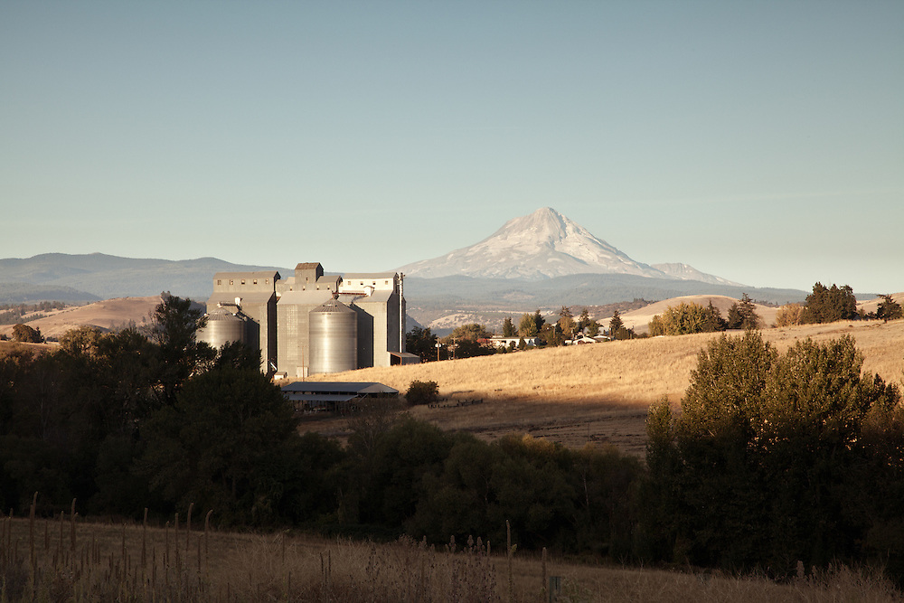 Grain silos, Dufur, Oregon.