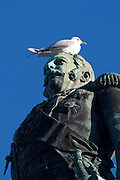 Senate Square; seagull s(h)itting on a statue of Alexander II, a Russian Tsar.