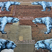Six Large Cats Wall Mural by Jaz in Richmond, Virginia<br />