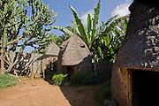 Africa, Ethiopia, Omo region, Dorze village