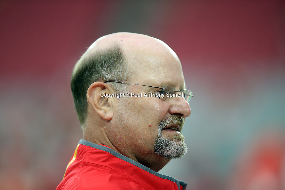 Kansas City Chiefs spread game analyst and special projects coach Brad Childress looks on before the 2015 NFL preseason football game against the Arizona Cardinals on Saturday, Aug. 15, 2015 in Glendale, Ariz. The Chiefs won the game 34-19. (©Paul Anthony Spinelli)