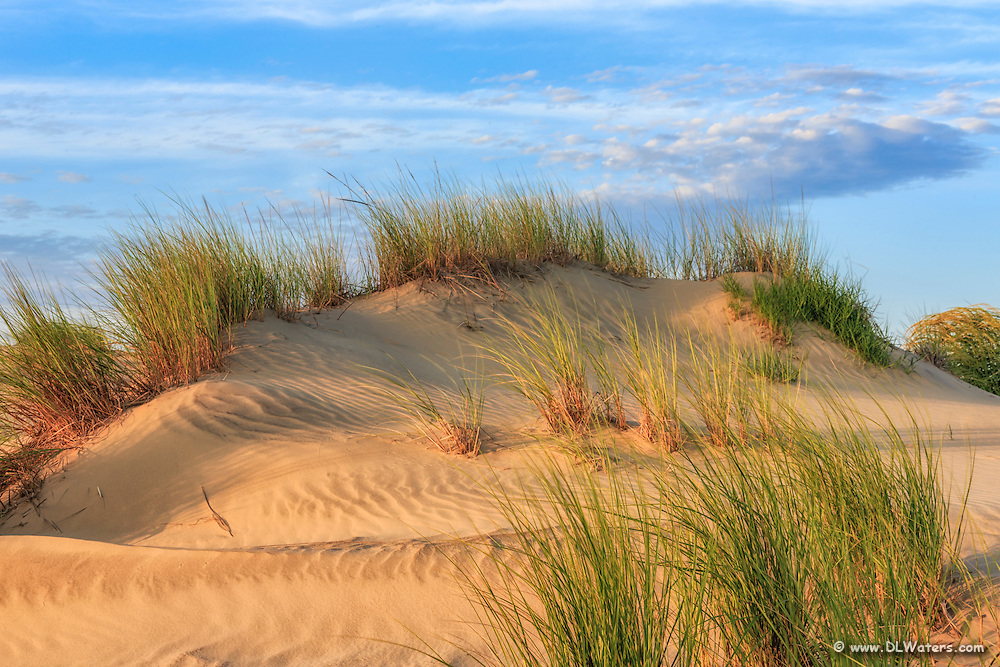 The dunes of Jockey's Ridge State Park on the Outer Banks .