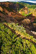 Waipoo Falls and the Waimea Canyon highway (aerial), Waimea Canyon State Park, Kauai, Hawaii USA