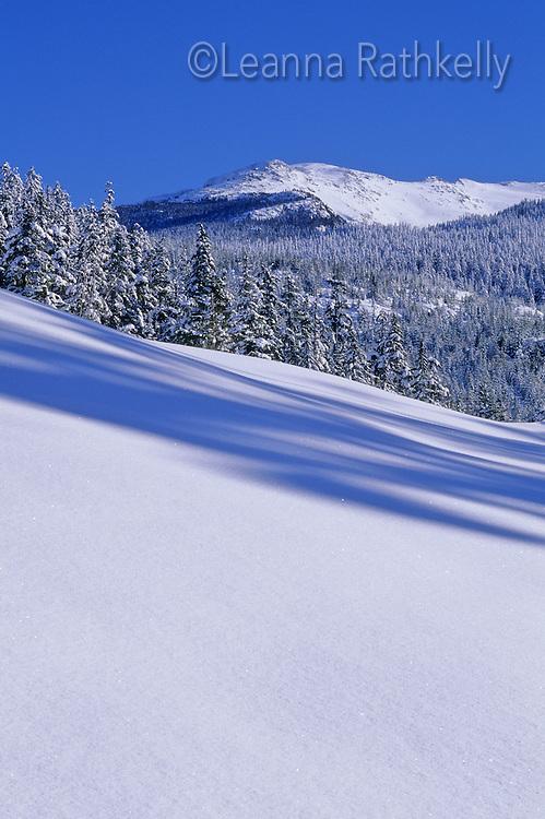 Fresh blanket of snow leads to mountains near Whistler, BC