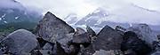 Walker Glacier, Alsek RIver, Alaska