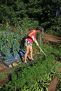 woman working in her vegetable patch