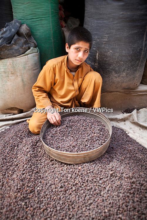 nuts-shop in herat, Afghanistan