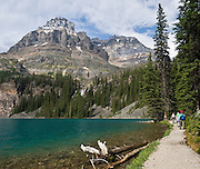 Mount Huber (3368 meters), at Lake O'Hara, Yoho National Park, British Columbia, Canada. Yoho is part of the Canadian Rocky Mountain Parks World Heritage Site declared by UNESCO in 1984. Panorama stitched from 2 images.