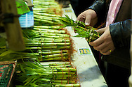 Small bamboo shoots for sale at the Taipei Jianguo Flower Market in Taipei, Taiwan.