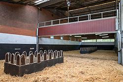 Het Trichelhof, merrie loopstallen<br /> het Trichelhof - Eindhout 2020<br /> © Hippo Foto - Dirk Caremans<br />  13/06/2020