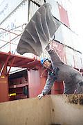 Shipping repair