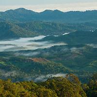 Mist shrouding the mountain ranges of Gunung Silam, Sabah, Malaysia, Borneo, South East Asia.