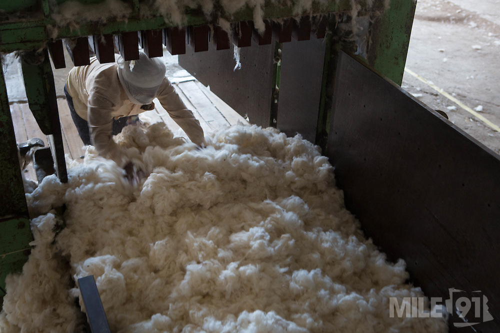 Cotton being ginned at a ginners in Madhya Pradesh, India.