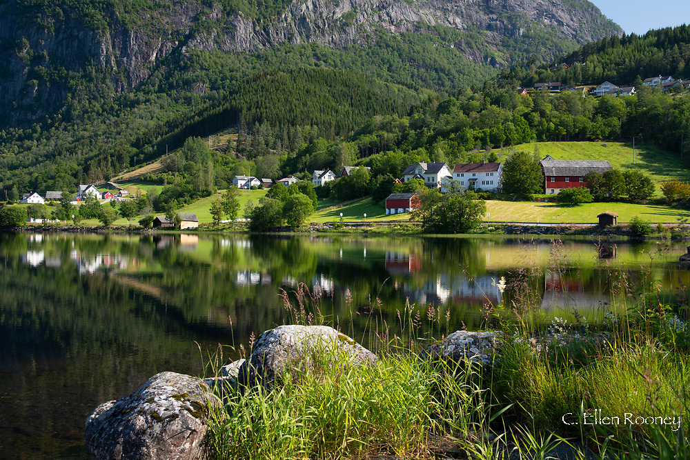 Traditional old houses and farm buildings around Lake Granvinvatnet, Hordaland, Vestlanvet, Norway, Europe