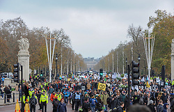 Extinction Rebellion campaigners came together in London for Rebellion Day 2. The protesters march along The Mall. The pro-people and planet group are calling on the Government to reduce carbon emissions to net zero by 2025 and to reduce consumption levels. London, 24 November 2018.