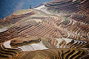 Flooded Long Ji rice terraces at Longsheng, near Guilin, China
