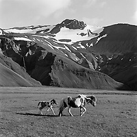 Kolgrafafj&ouml;r&eth;ur &aacute; Sn&aelig;fellsnesi, 1967<br /> <br /> Kolgrafafj&ouml;r&eth;ur on the Sn&aelig;fellsnes peninsula, 1967